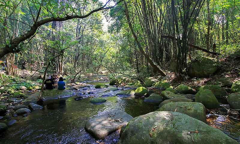 Ecological-conservation