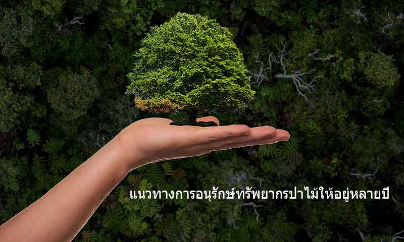Forest-resource-conservation